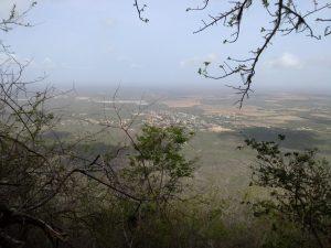 KingfisherParaguana37.CerroSantaAnaOtro2